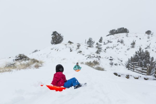 siblings sledding down hill